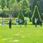 Tai chi chuan dans le parc de Mondorfau soleil