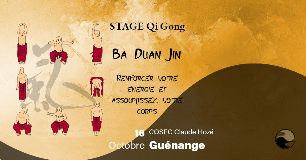Read more about the article Stage Qi gong, Ba Duan Jin